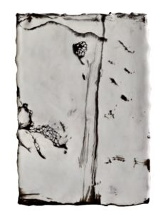 2019, encaustic on panel,15 x 22cm